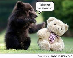 Patient Bear Meme - baby bear punches teddy bear meme your friends
