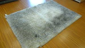 Clean Area Rug How To Clean A Large Area Rug Home Cleaners How To Clean Large