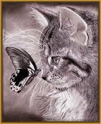 imagenes a lapiz de gatos maravillosos dibujos de felinos a lapiz dibujos de gatos