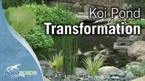 Aquascape Ponds Koi Pond Transformation With Aquascape Youtube