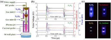 production of simplex rns and ros by nanosecond pulse n2 o2 plasma