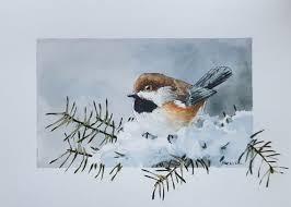 watercolor tutorial chickadee boreal chickadee by peter sheeler fine art original watercolor