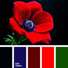 Blue And Red Color Combination 17 καλύτερα ιδέες για Red Color Combinations στο Pinterest