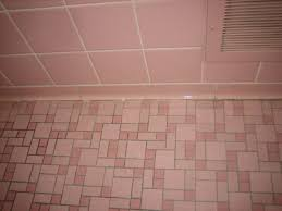 Bathroom Tile Steam Cleaner - excellent bathroom tile grout 129 bathroom tile grout steam