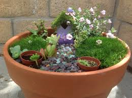 Mini Fairy Garden Ideas by Fairy Garden Planters Diy Succulent Planters U0026 Fairy Garden Ideas