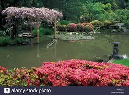 Botanical Gardens Seattle Usa Washington Seattle Washington Park Arboretum Japanese