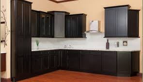 cabinet satisfying home depot jewelry cabinet endearing cabinet