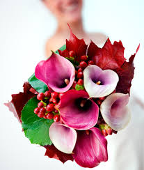 Bulk Flowers Asiri Blooms U2022 Wholesale Roses U0026 Bulk Flowers U2022 Farm Direct