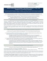 resume format for supply chain executive executive resumes corybantic us cio executive resume samples resume samples examples brightside executive resume