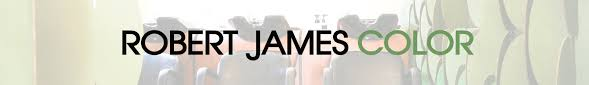 the best salon in san francisco robert james color