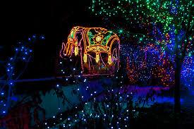 Oregon Zoo Zoo Lights by Lights Zoo Houston Zoo Zoo Lights Zoo Lights At The Oregon Zoo