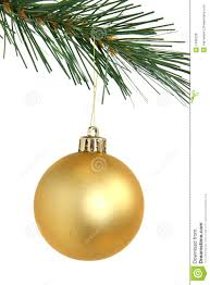 golden hanging from tree royalty free