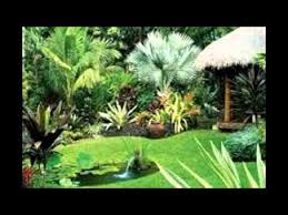 Tropical Landscape Ideas by Tropical Landscaping Ideas Youtube