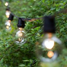 Clear Patio Lights Patio Lights Commercial Clear Globe String Lights 75 G50 E17