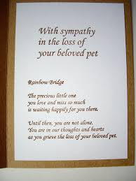 sympathy cards for pets handmade pet sympathy card pet loss card paw by jdoorecreations