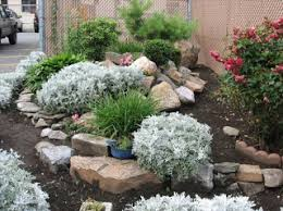 Simple Rock Garden Home Designs Amazing Rock Garden Designs For Your Home