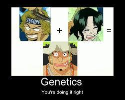 Meme One Piece - one piece usopp heredity meme by bakeneko14 on deviantart