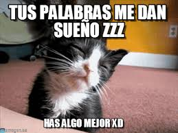 Meme Sleepy - tus palabras me dan sueño zzz sleepy cat meme on memegen