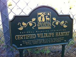 creating wildlife habitat on the campus what u0027s not to like