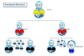functional managers corporate structures u2013 corparium