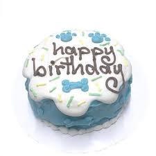customized sprinkle birthday cakes for dogs blue organic dog treats
