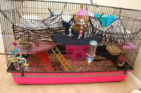 Hamster Cages Petsmart Stormy Hammy Happenings Page 18