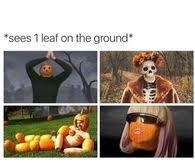 Fall Memes - funny fall memes pictures photos images and pics for facebook