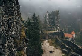 abandoned castle ruins in the forest architecture photos