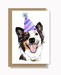 happy birthday dog greeting card pets of the homeless australia