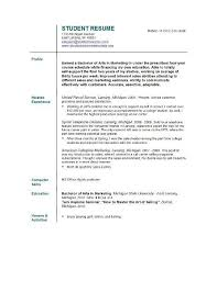 Resume Introduction Statement Good Objective Statement For Resume Lukex Co