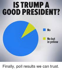 Yellow Meme - is trump a good president no no but in yellow finally poll results