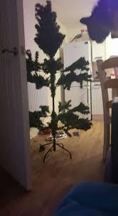 is this britain s worst tree home bargains admit tragic tree