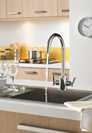 Artisan Sink Grid by Bathroom Designer Vessel Sinks Artisan Sinks Cool Bathroom Sinks
