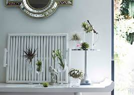 9 unique ideas to display indoor plants home u0026 decor singapore