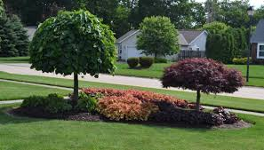 patio u0026 outdoor front yard island landscape ideas with trees and
