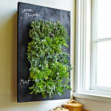 Garden Wall Planter by Tutorial Awesome Indoor Living Wall Vertical Garden Made From