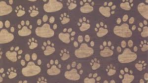 paw print background surface pattern 69479 2048x1152 jpg 4532