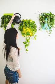 Hanging Wall Planters Wall Planter Made From Pvc Pipe Can You Believe It Click To