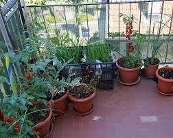 apartment balcony gardening ideas mainstreet equity corp blog