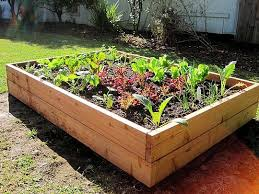 45 best raised beds and green houses images on pinterest