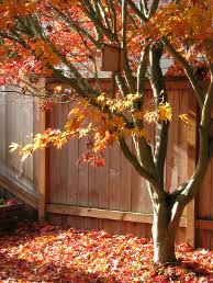 a fall fence project as published in home and decor ideas magazine