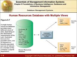Business Intelligence Specialist Chapter 5 Foundations Of Business Intelligence Databases And