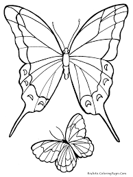 coloring pages of butterfly fresh butterfly to color gallery coloring page 4677 unknown