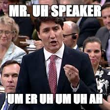 Justin Trudeau Memes - why the face