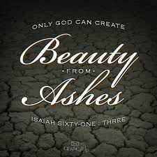 from ashes 80 best beauty from ashes images on words bible