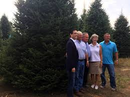 white house christmas tree selected from shawano county wisc wjla