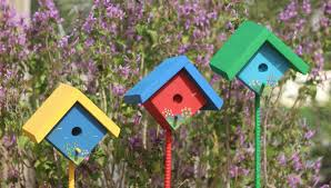 italifin photo keywords birdhouse