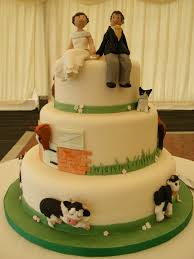 farm wedding cake lol cakes pinterest themed cakes