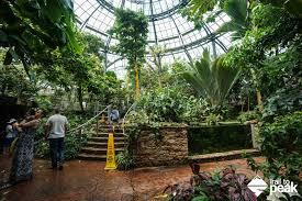 Botanical Gardens Huntington A Guide To The Huntington Botanical Gardens Library And