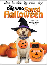 halloween torrents amazon com dog who saved halloween the joey lawrence gary